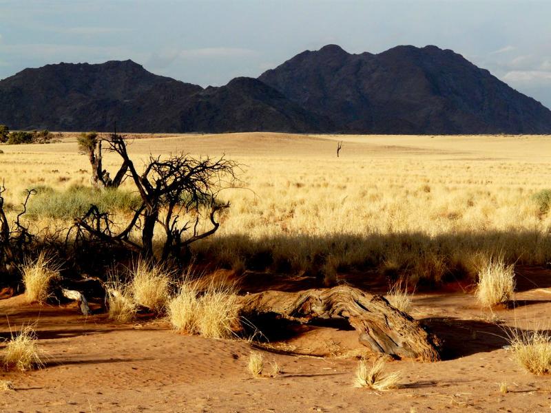 namibia-teil-1-210