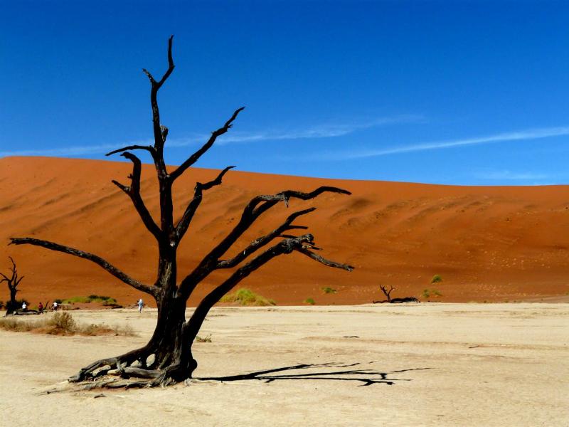 namibia-teil-1-320